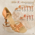 869 Moonglow Buty do tańca Ray Rose.jpg